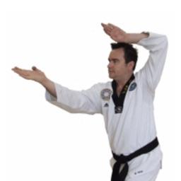 Taekwondo Strikes