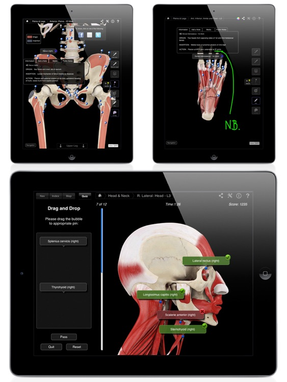 Muscle System Pro III screenshot-2