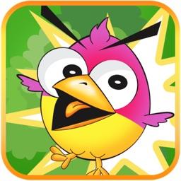 Birdzy