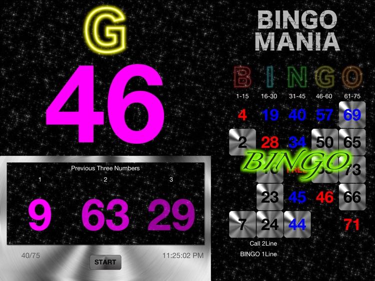 BINGO MANIA The Hybrid screenshot-3