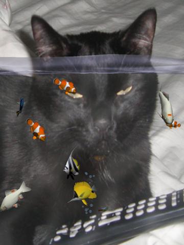 Fish Fingers! 3D Interactive Aquarium screenshot