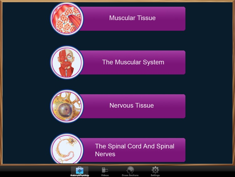 Anatomy and Physiology screenshot-0