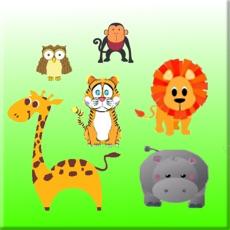 Activities of Kids Zoo