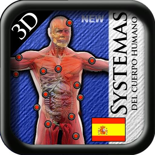 Sistemas del Cuerpo Humano en 3D