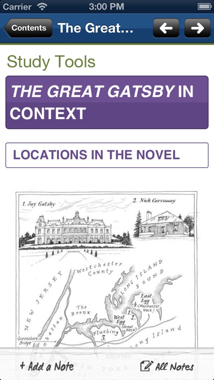 The Great Gatsby York Notes AS and A2 screenshot-3