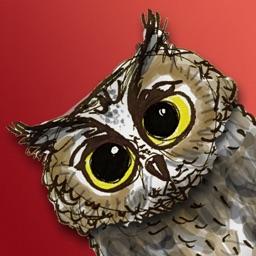 Rotate the Owl
