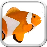 Codes for Fish the Fishes Hack