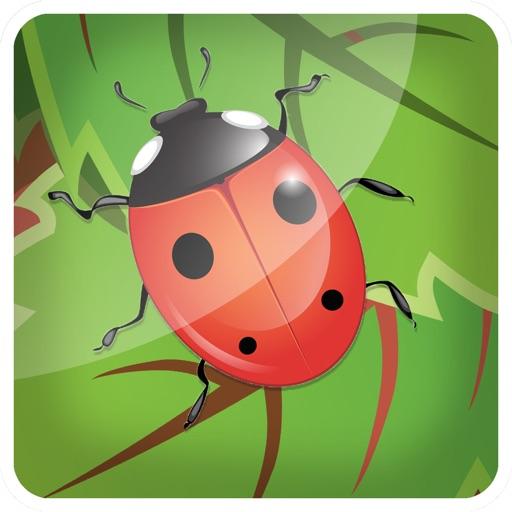 3D Bug Farm Flick N Fling Game for Free