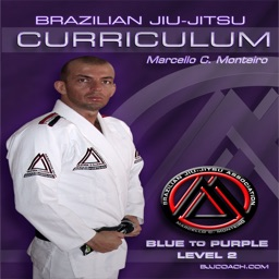 BJJ Blue to Purple Lvl.2 Curriculum Step-by-Step Jiu Jitsu System
