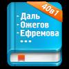 Карманный словарь 40в1 - Dream Group LTD