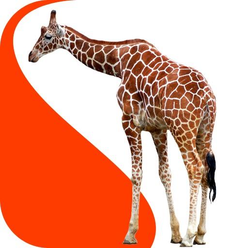 Animals Atlas iOS App
