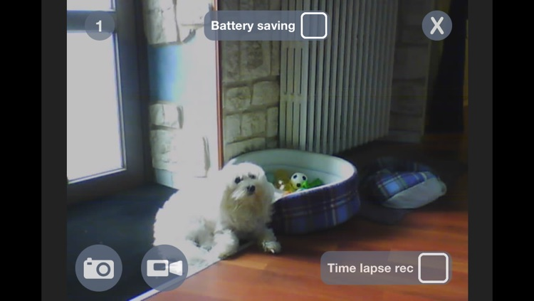myIPCam IP camera view, recording video time lapse