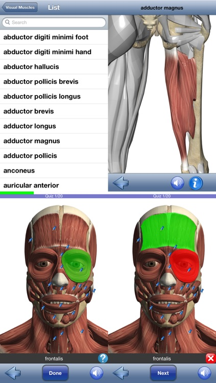 Visual Muscles 3D screenshot-4