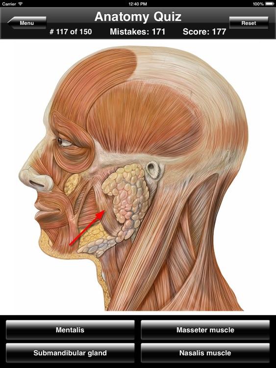 Anatomy Quiz for iPad screenshot-3