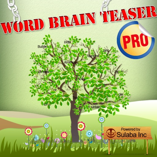 Word Brain Teasers Pro - Teach, Learn and Quiz English Word