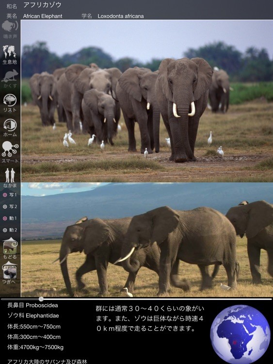 Animal Life for Japan screenshot-4