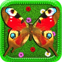 Codes for Butterfly! Hack