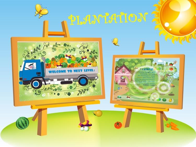 Plantation +