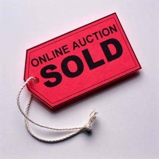 Auction Profit Calculator