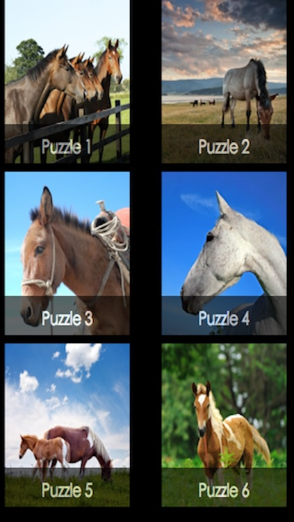 Little Pony Puzzle HD