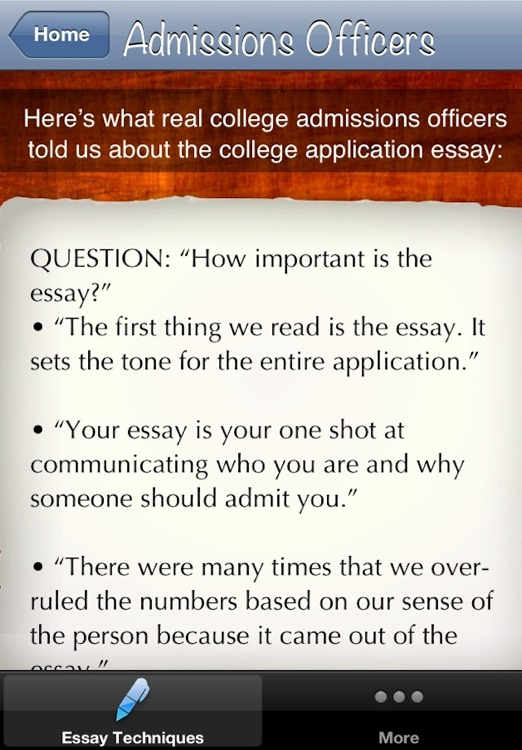 College Essay Techniques screenshot-2