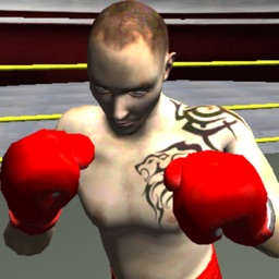 BOXING WITH ZOMBIE 3D