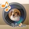 EyeCam -目線をキャッチ-