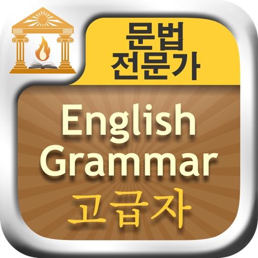 문법 전문가 : English Grammar 고급자