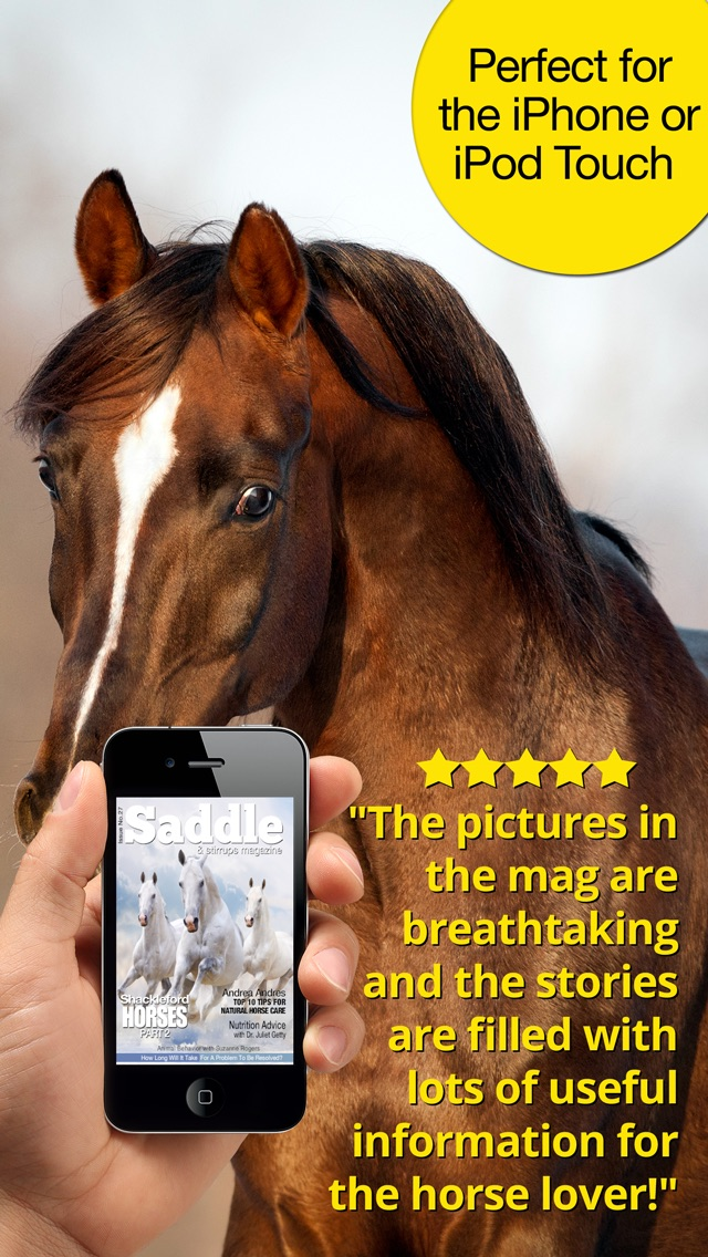 Saddle And Stirrups Magazine: Equestrian health, nutrition and horsemanship for horse and rider Screenshot
