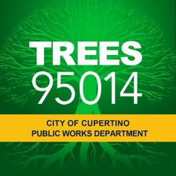 Trees 95014
