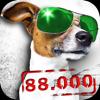 88,000 笑话 - Funny Jokes & Cool Sayings
