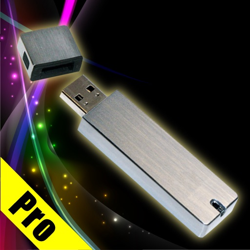 USB Flash Drive Pro for iPad