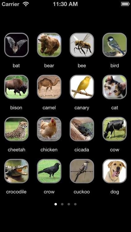 Animal Sounds++