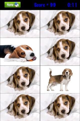 Beagle Match-0