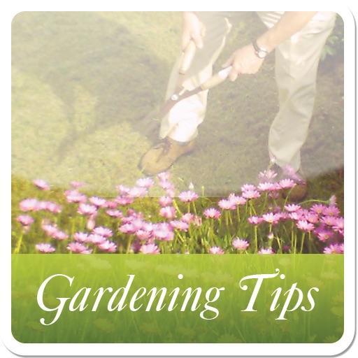 Gardening Tips iPad Version icon