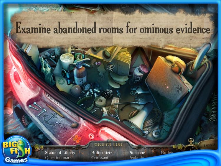 Enigmatis: The Ghosts of Maple Creek Collector's Edition HD screenshot-4