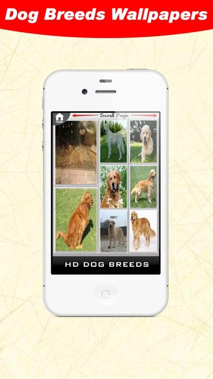 Dog Breeds WallPapers screenshot-3