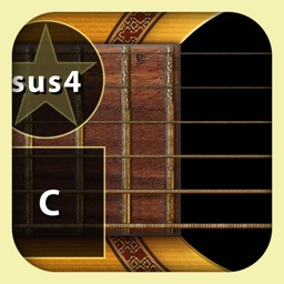 WI Guitar™