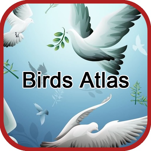 Birds Atlas
