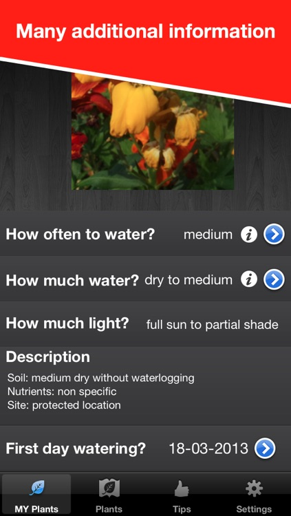 WaterPlease! Pro