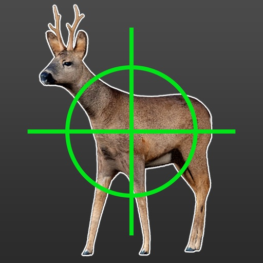 Hunting Simulator Free