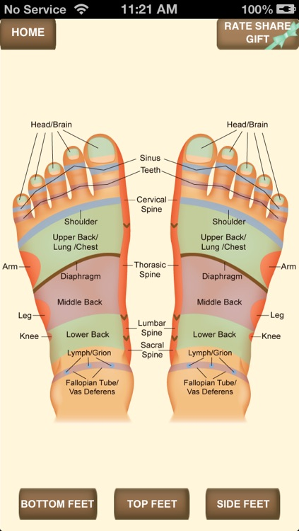 iPocket Foot Reflexology screenshot-0