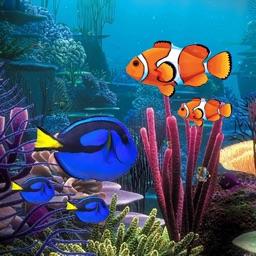 Aquarium Builder
