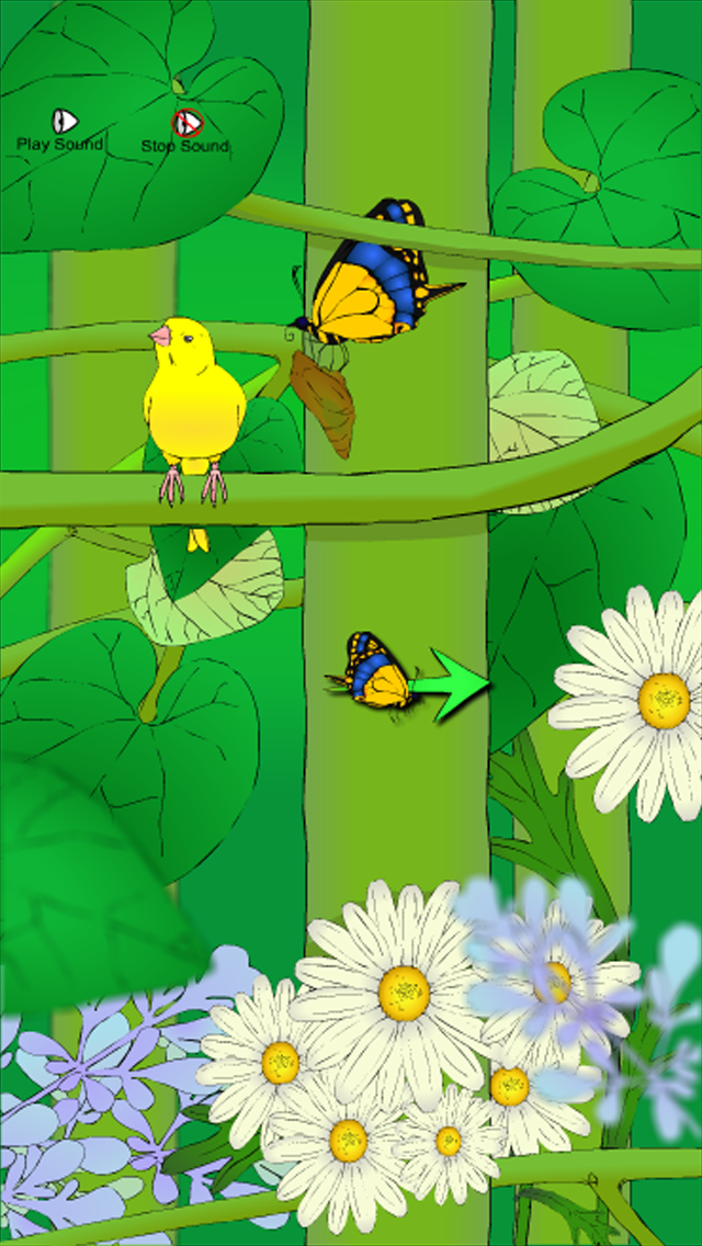Grow A Butterfly screenshot three