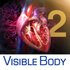3D Heart & Circulatory Premium 2 (Cœur et système circulatoire Premium en 3D 2) - Visible Body