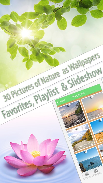 Nature Music (helps to relax, meditate, sleep, yoga and SPA)