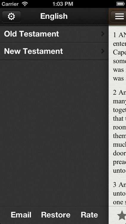 Holy Bible: 27 Languages Side by Side! screenshot-3