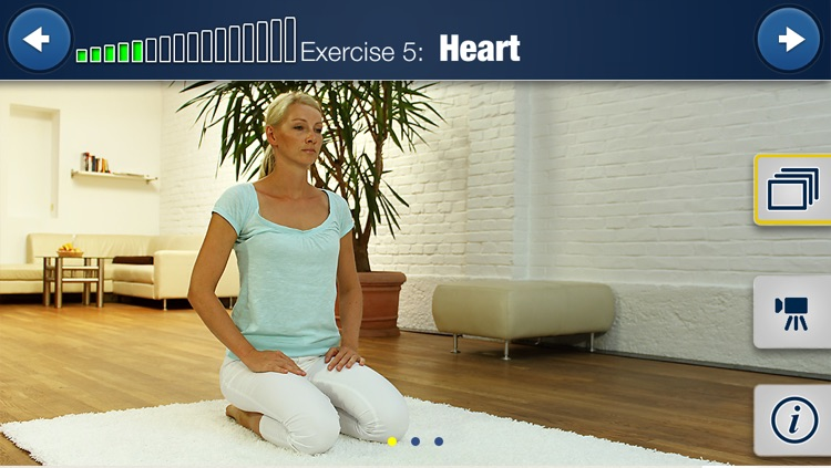 Meridian Yoga HD 15 Min. Training