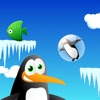 Pingy Jumper - Penguins CAN fly!!