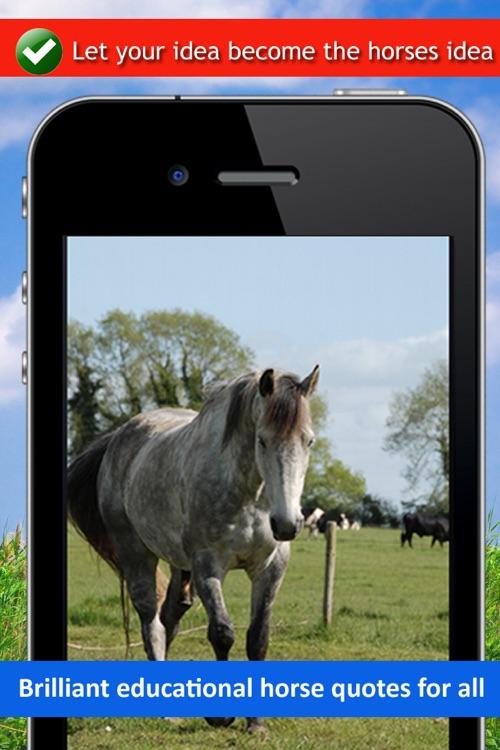 Horse Back Riding Sayings - Equestrian Horsemanship App